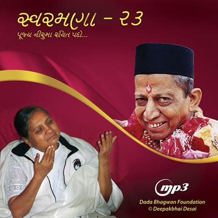 Picture of સ્વરમણા - ૨૩ નીરૂમાં રચીત પદો MP3 (Gujarati)