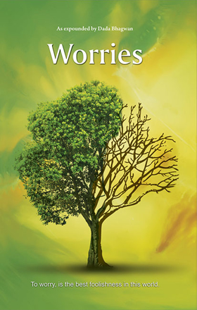 Picture of Worries